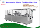 Easy Operation Blister Packaging Equipment For Consumer Electronics Products